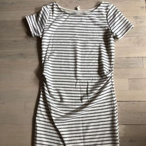 Pink Blush Ivory Striped Fitted Maternity Dress